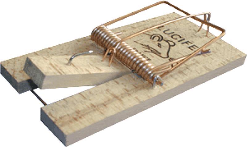 Tapette rat bois 17 x 8 5 cm hyprodis - Tapette a rat ...