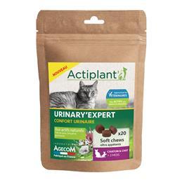 Actiplant soft chews urinary
