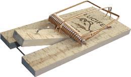 Tapette à Souris bois 9,5 x 5cm
