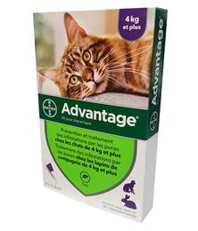 Advantage 80 chat + 4 kg