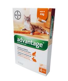 Advantage 40 chat - 4 kg