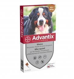 ADVANTIX chien 40-60kg